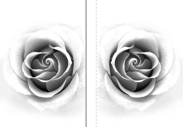 Fotogardinen: GRAUE ROSE / 2 Schals 265*200 cm / Überlappung: 20 cm / Blackout / Kräuselband