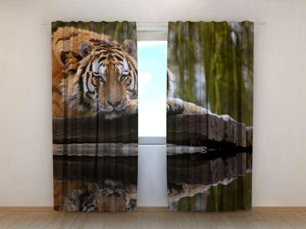 Fotogardinen: WEISHEIT DES TIGERS